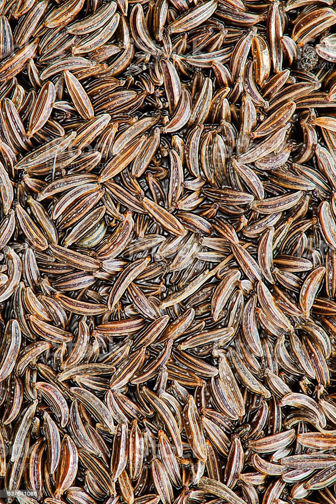 close-up on cumin stock photo