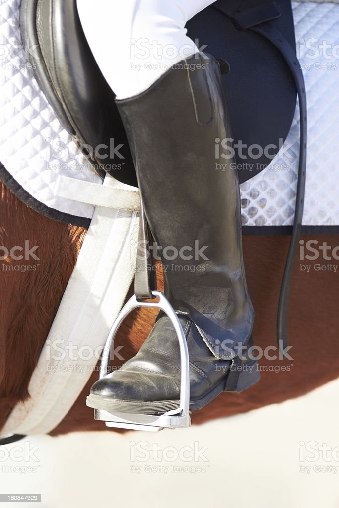 Closeup on horse tack royalty-free stock photo