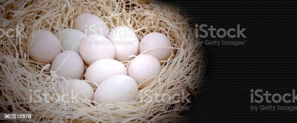 Foto de Closeup Em Muitos Ovos Orgânicos Frescor São Colocados Sobre A Palha No Fundo Natureza Fazenda Com Espaço De Cópia e mais fotos de stock de Agricultura