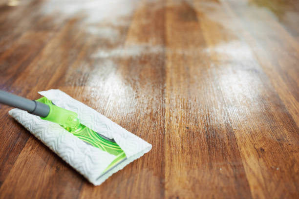 Closeup on mop and wet floor at modern home in sunny day stock photo