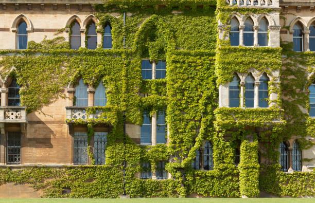 close-up on the facade christ church college. - ivy building imagens e fotografias de stock
