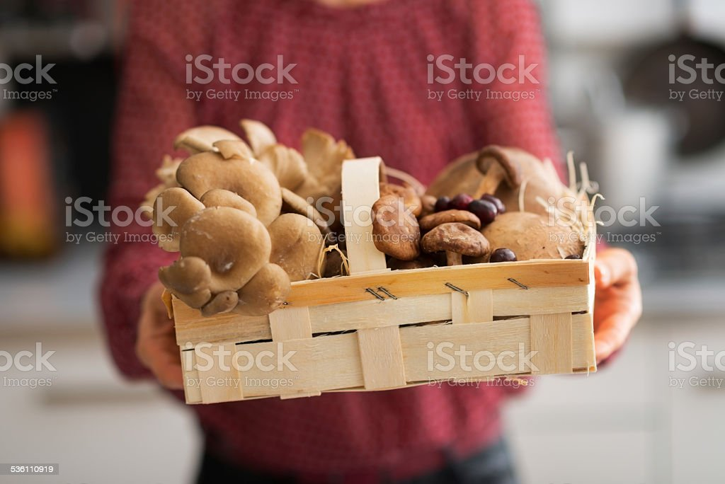 closeup on young housewife showing basket with mushrooms stock photo