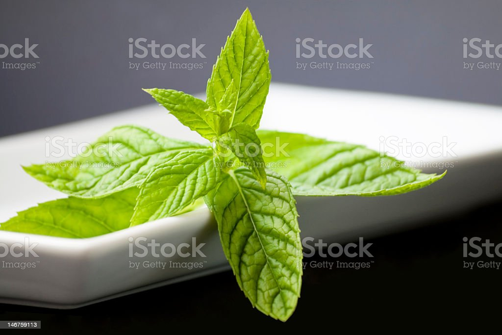 Close-up photo of peppermint leaves on a white plate royalty-free stock photo