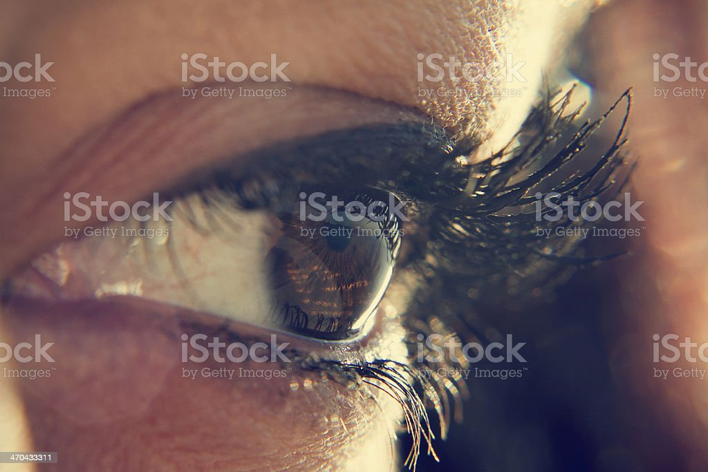Closeup photo of someone's brown eye and black lashes stock photo