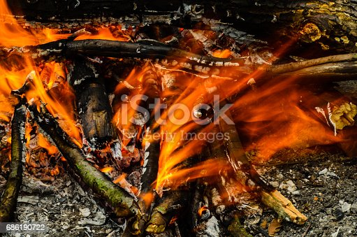 istock Close-up photo of the camp fire 686190722