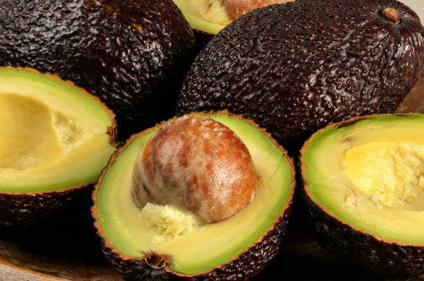 Closeup photo - ripe brown avocados hass bilse variety halved, detail on fruit seed stock photo