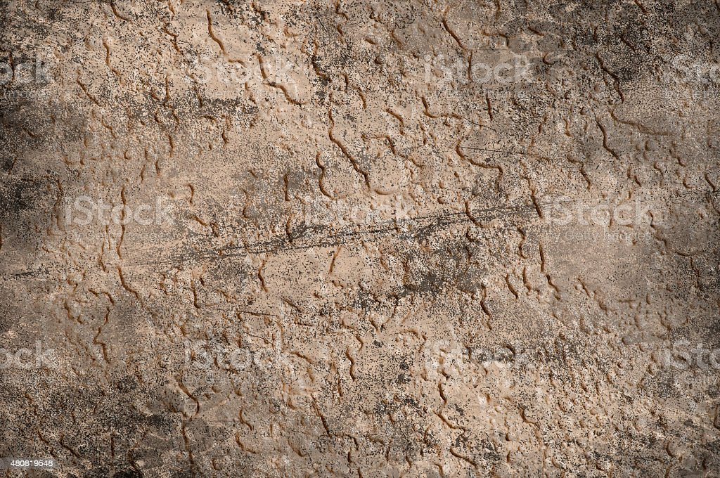 Closeup Photograph Of A Grunge Textured Wall stock photo