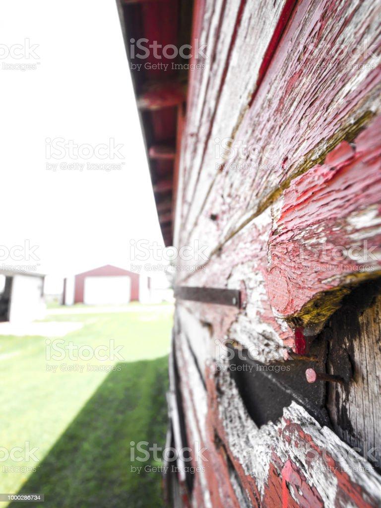 Peinture Bois Gris Patiné photo libre de droit de photographie du gros plan du côté