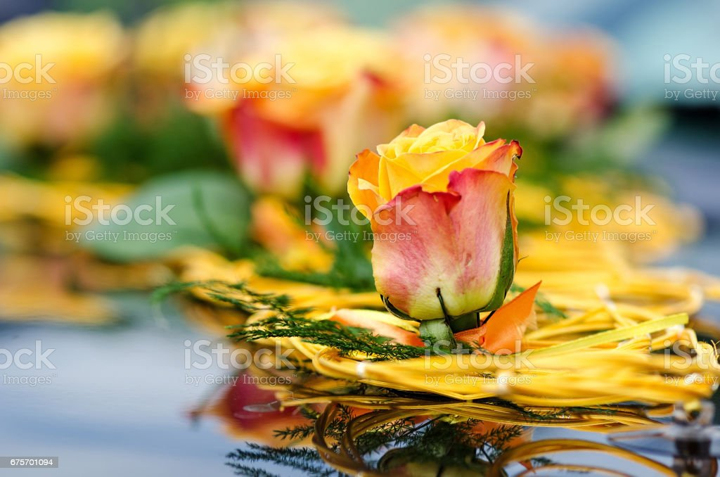 Close-up photography. Wedding car decoration of yellow roses. royalty-free stock photo