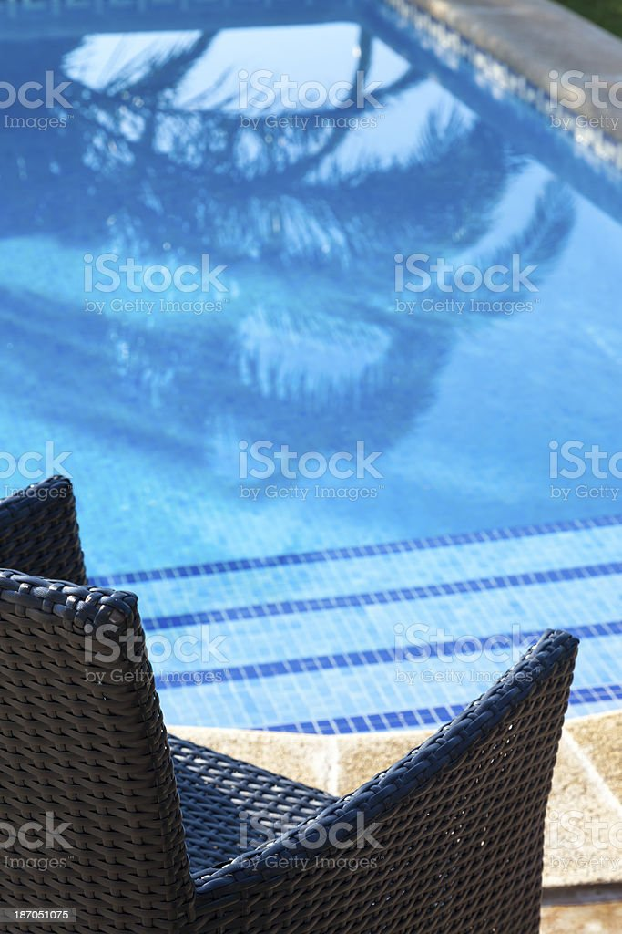 Close-up. royalty-free stock photo