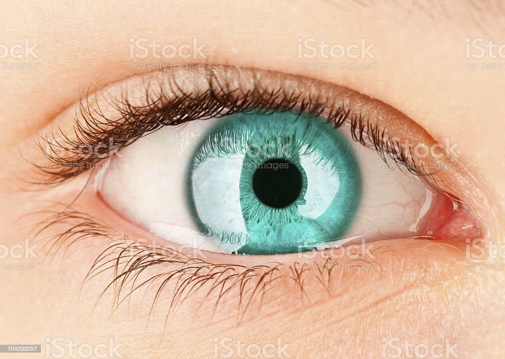 Closeup picture of a human eye with blue iris royalty-free stock photo