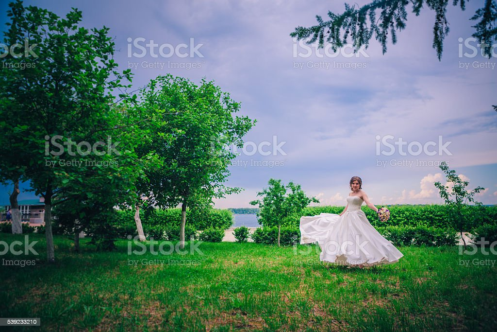 Retrato de primer plano de una hermosa novia, foco suave foto de stock libre de derechos