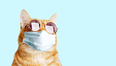 istock Closeup portrait of ginger cat wearing sunglasses and protective medical mask isolated on light cyan. Copyspace. 1222550556