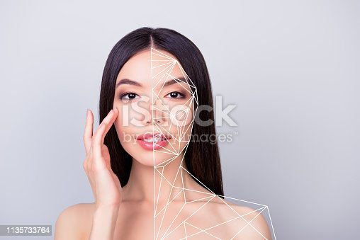 istock Close-up portrait of nice charming lady touching pure perfect flawless smooth shine clean clear lines showing marked divided different parts places after treatment isolated over pastel gray background 1135733764