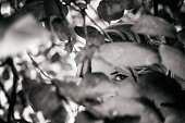Close-up portrait of young blonde woman with her face covered by leaf, except eye. Black and white