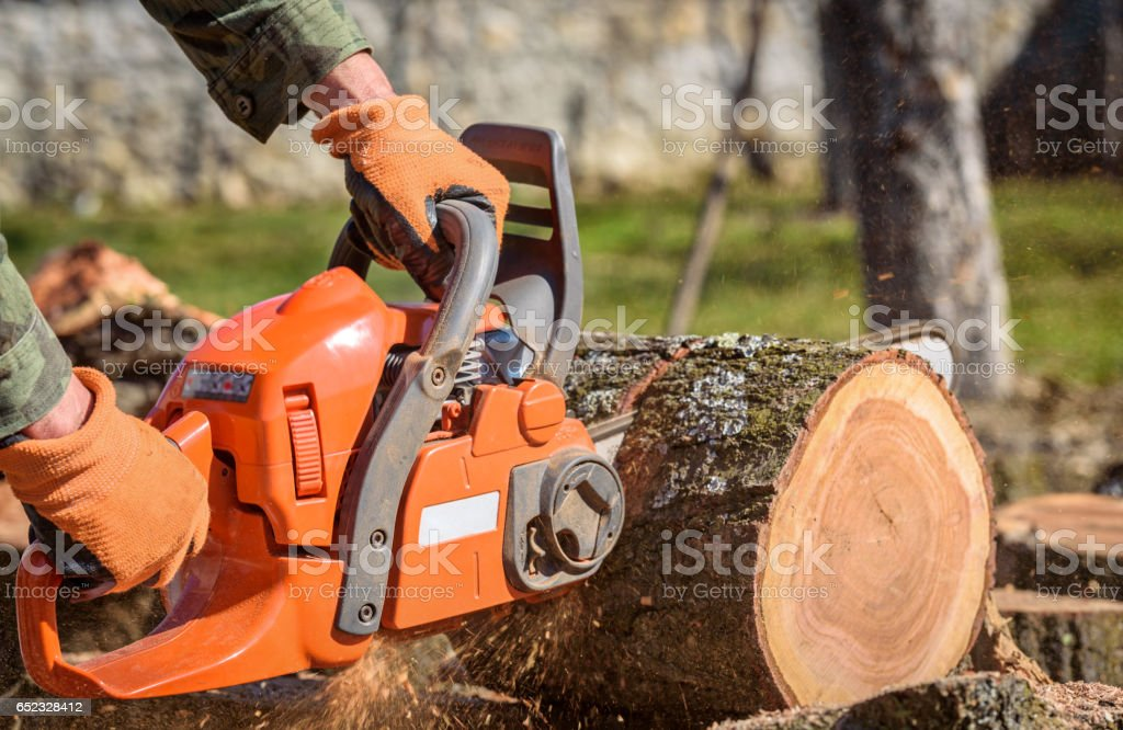 Close-up professional chainsaw blade cutting log of wood stock photo