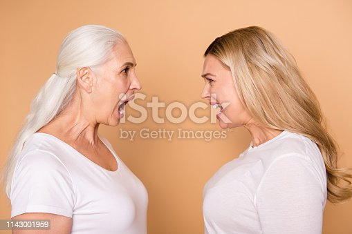 661896674istockphoto Close-up profile side view portrait of nice attractive charming lovely crazy fury mad frustrated ladies yelling loudly at each other isolated over beige pastel background 1143001959