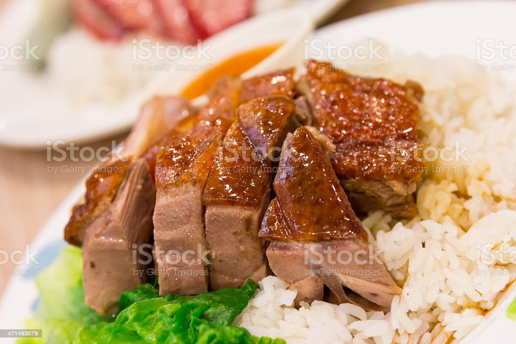 Closeup roast duck with rice and sauce royalty-free stock photo