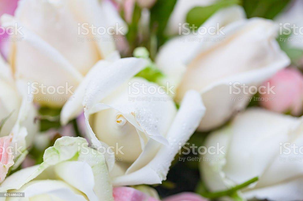 Closeup roses bouquet photo libre de droits
