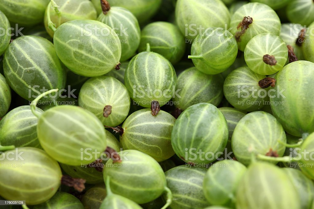 Close-up shot of gooseberries royalty-free stock photo