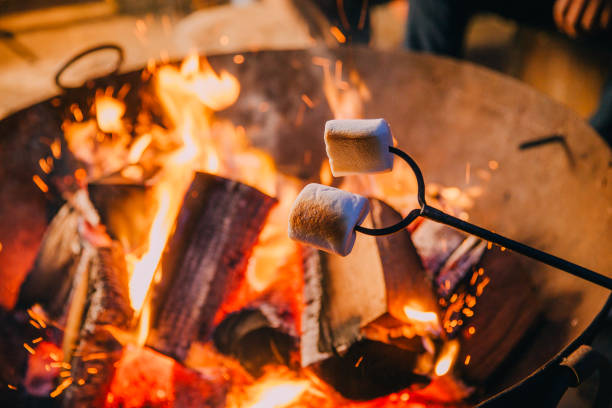 Close-up Shot of Marshmallows Being Held Over a Fire stock photo