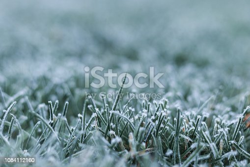istock Close-up shot of morning frost on green grass at early winter or autumn cold morning. Cold seasonal weather. Copy space. Selective focus. Iced frozen grass on meadow at garden. Natural background 1084112160
