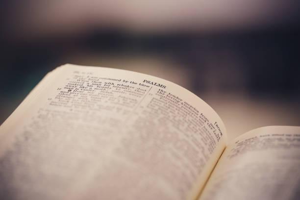 närbild skott av öppna bibeln - paper mass bildbanksfoton och bilder