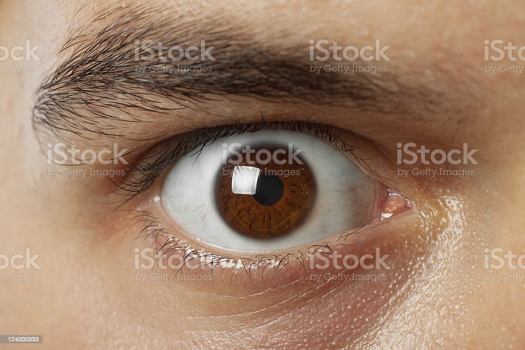 close-up shot of young man brown eye stock photo