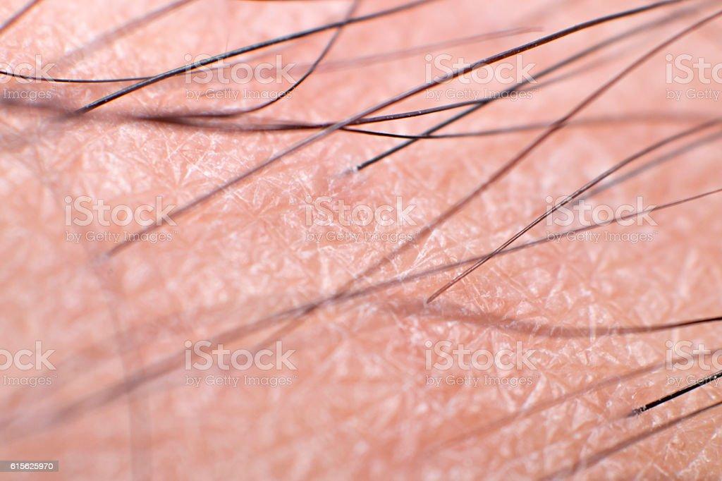 Closeup Skin with Leg Hair stock photo