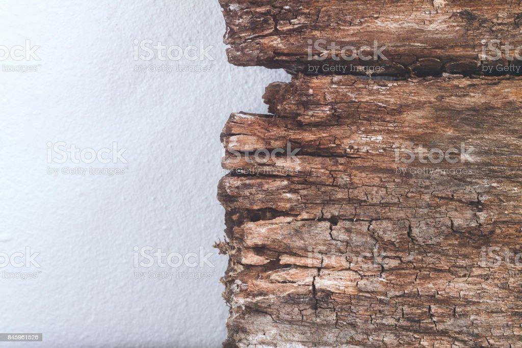 Closeup Textur und Hintergrund Holz von alten Panel Weißzement Wandmontage – Foto