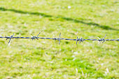 istock close-up the barbwire on the fence building 853848514