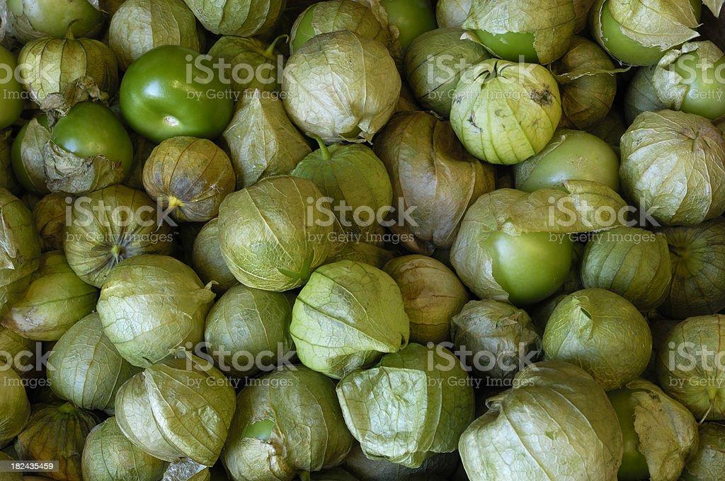 Close-up Tomatillo in Shipping Box stock photo