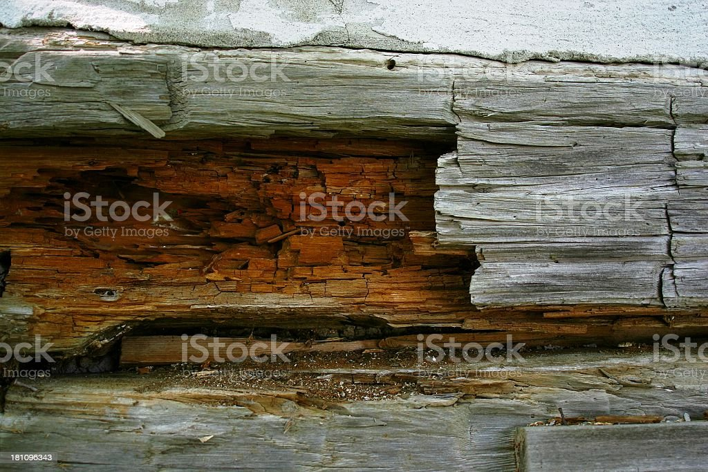 Closeup view of an old log wall stock photo