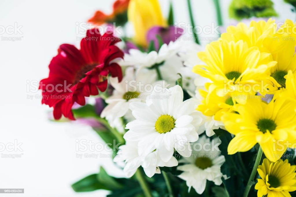 close-up view of beautiful bouquet of blooming flowers isolated on grey royalty-free stock photo