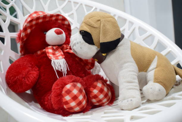 Closeup view of beautiful teddy bear and dog toys on a white chair Closeup view of beautiful teddy bear and dog toys on a white chair christmas teddy bear stock pictures, royalty-free photos & images
