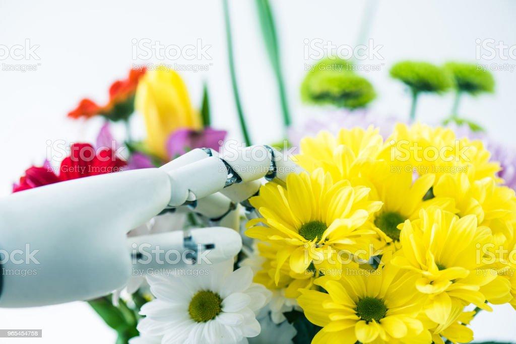 vue rapprochée de la main du robot et de belles fleurs blanc - Photo de Arbre en fleurs libre de droits