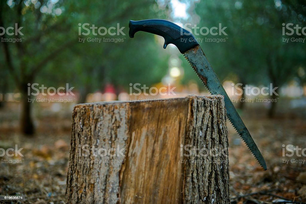 Close-up view of hand saw over wood stock photo