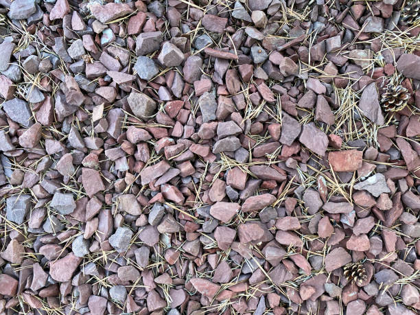 close-up view of red and grey stone rocks ground cover with twigs and pine cones stock photo