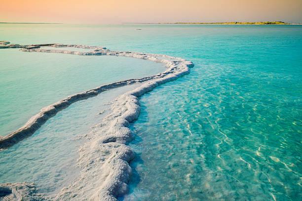dead sea salt shore - morze martwe zdjęcia i obrazy z banku zdjęć