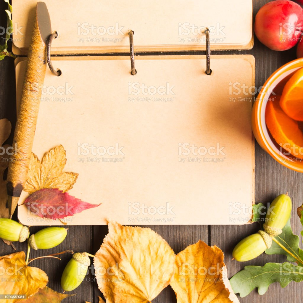 Closeup view of vintage old open notebook with copy space with autumn decoration stock photo