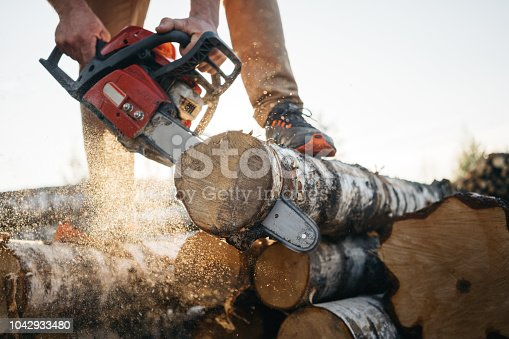 Closeup view on chainsaw in strong lumberjack worker hands. Sawdust fly apart