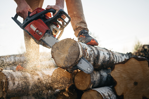 istock Closeup view on chainsaw in strong lumberjack worker hands. Sawdust fly apart 1042933480