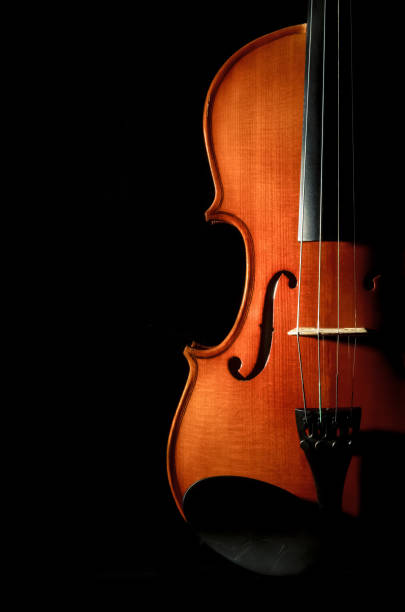Closeup Violin orchestra musical instruments on black background stock photo