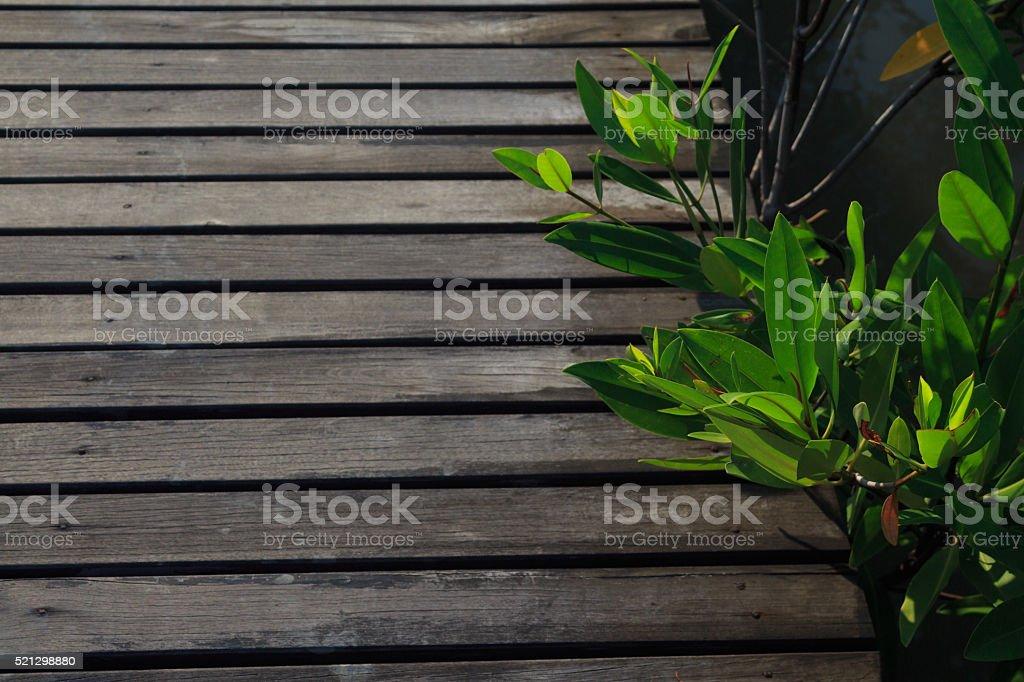 Крупным планом деревянный мост Стоковые фото Стоковая фотография