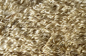 close-up woolly sheepskin on background