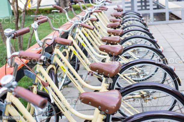 Closeup Yellow bicycles parking for rent