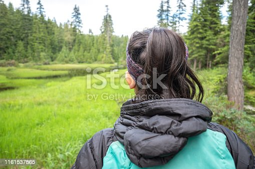 903015102istockphoto POV Closeup, Young Woman with Backpack Hiking Along Alpine Lake 1161537865