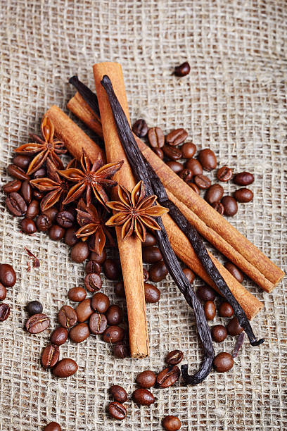 close-ups of various spices - coffe beens, anise, vanilla, cinna stock photo