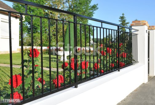 elegant black metal fence in front of red roses