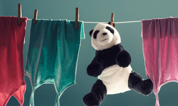 Clothes and plushie hanging on the clothes line stock photo